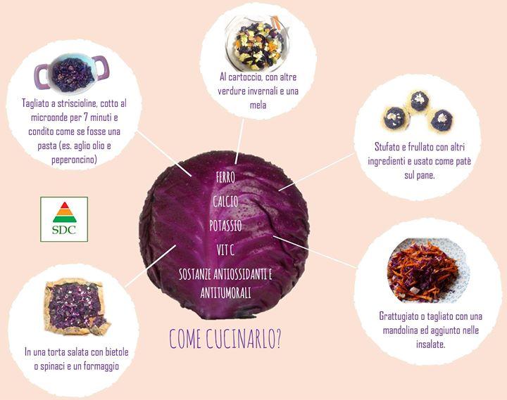 cavolo-cappuccio-rosso-un-ortaggio-ricco-di-sali-minerali-vitamine-e-sostanze-antiossidanti-e
