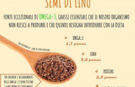semi-di-lino-fonte-importante-di-omega-3-ricordate-di-pestarli-prima-di-consumarli-cosi